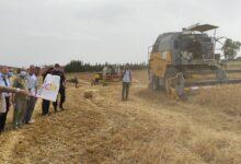 صورة ميلة / انطلاق عملية الحصاد و الدرس لموسم 2020 – 2021