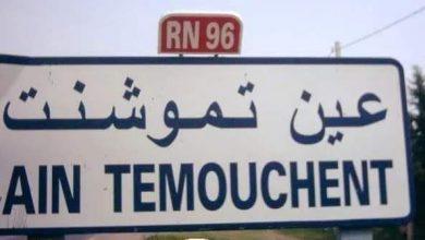 صورة عين تيموشنت / أكثر من40 ألف شخص ملقح ضد فيروس كورونا بولاية عين تيموشنت.