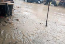صورة الطارف / امطار لدقائق اغرقت شوارع عين عسل.