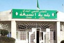 صورة خنشلة / نشاط غير مسبوقة لعمليات نهب العقار بإقايم بلدية أنسيغة 
