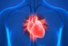 صورة صحة / متلازمة القلب المنكسر تشهد تفاقما لافتا في عدد الحالات